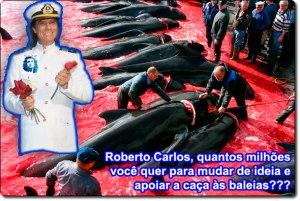 roberto_baleia2