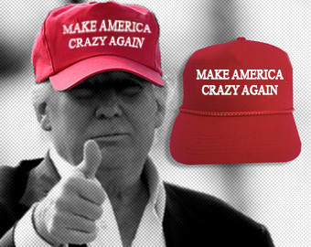 make_america_crazy_again
